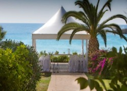 Nissi Beach Resort -Weddings Cover Image